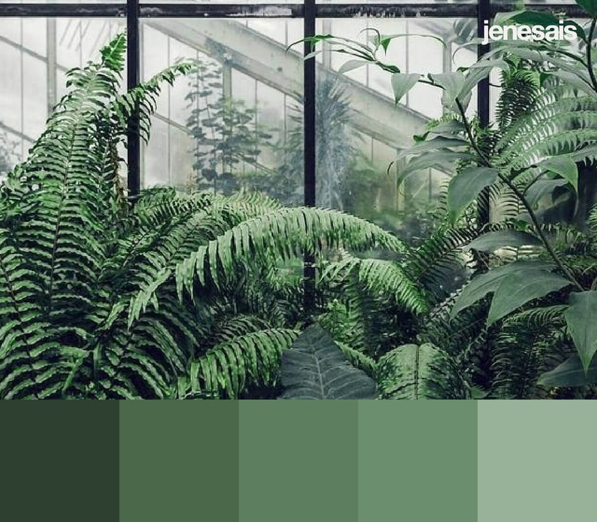 Plant Aesthetic Color Palette