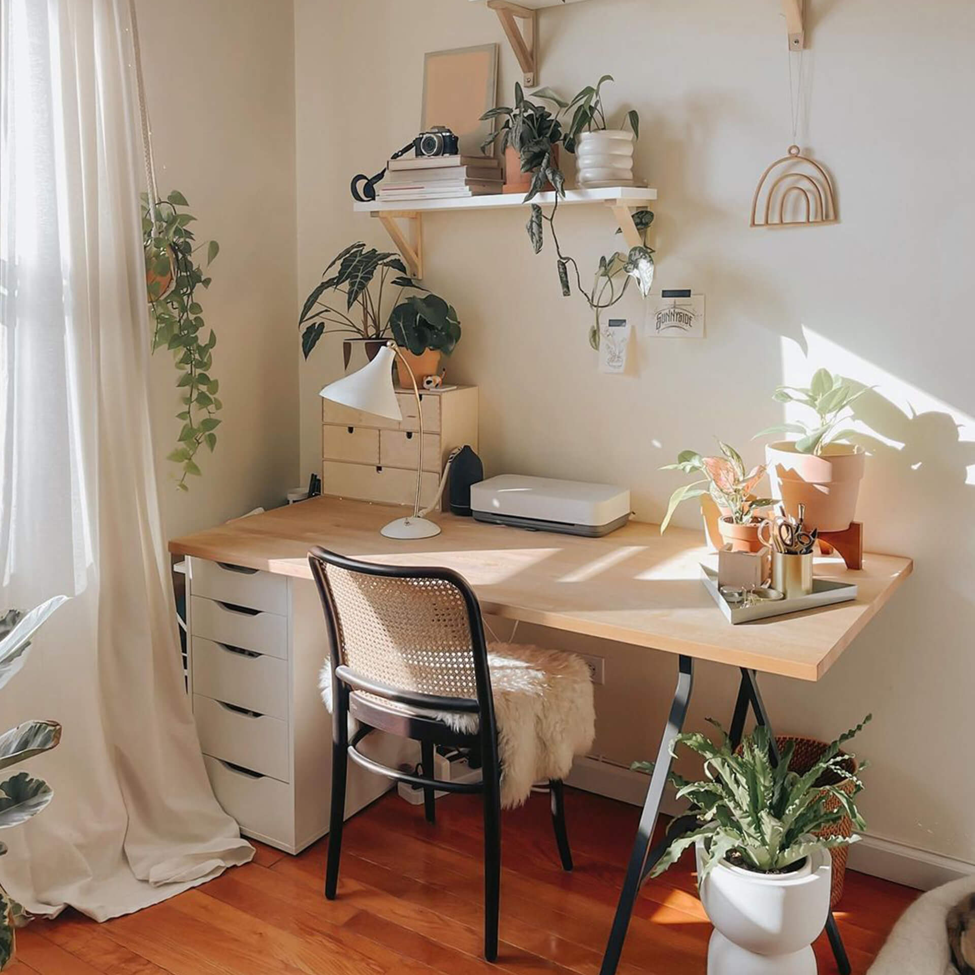 Plant Aesthetic Desk Setup