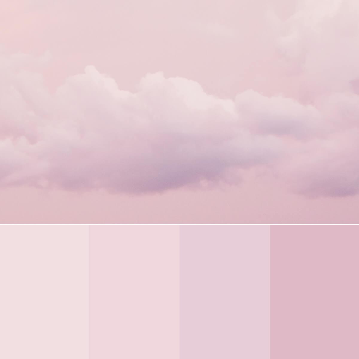Soft Pink Color Palette