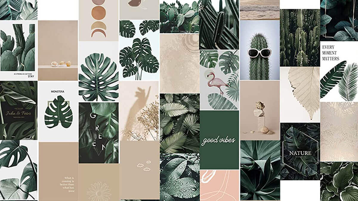 Plant Theme Aesthetic Wall Collage Kit